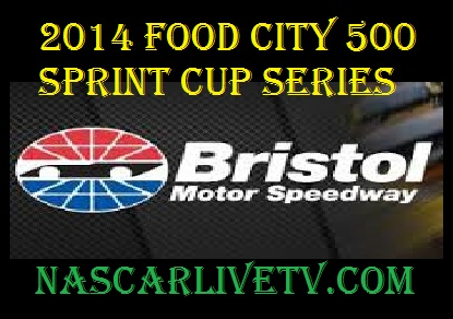 2014 Food City 500 Sprint Cup Series