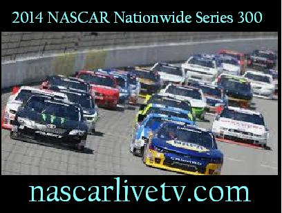 2014 NASCAR Nationwide Series 300